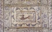 Museo Civico di Foggia, mosaico da Arpi (da http://www.dauniaferens.com/archeologia-classica/).